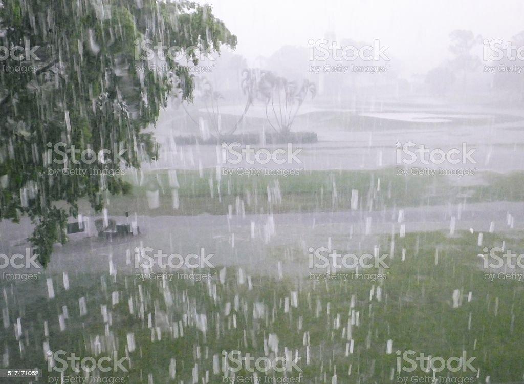 Torrential Rain stock photo