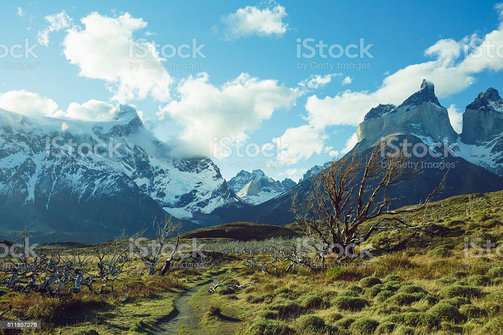 Torres del Paine - Patagonia, Chile stock photo