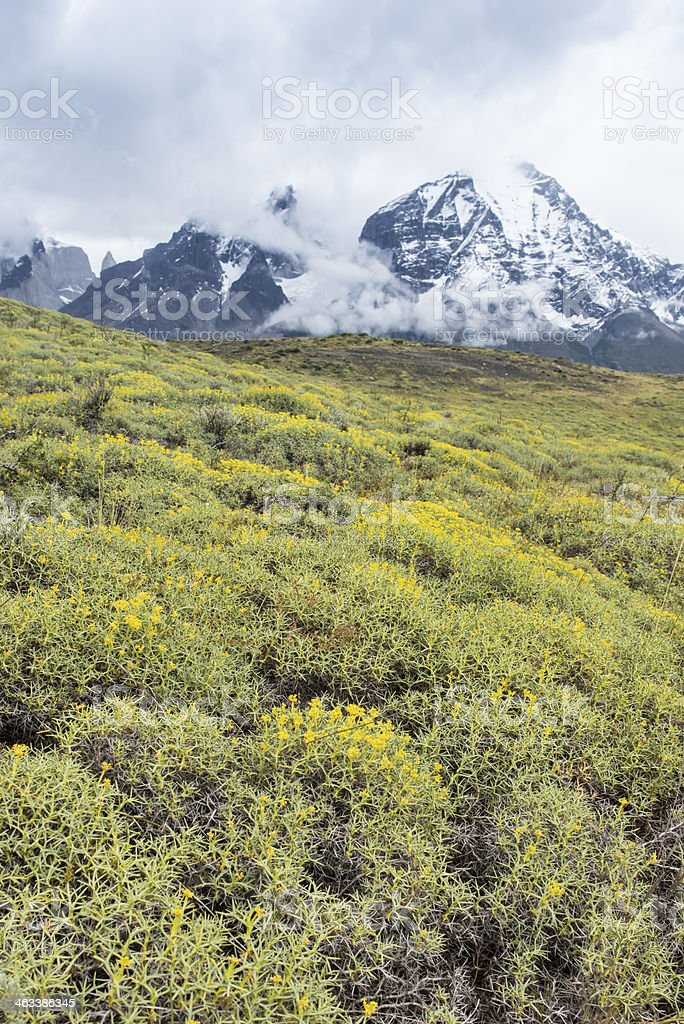 Torres del Paine stock photo