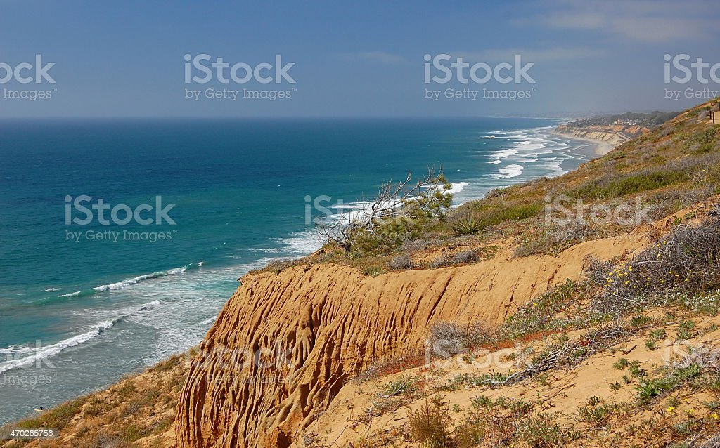 Torrey Pines State Reserve stock photo