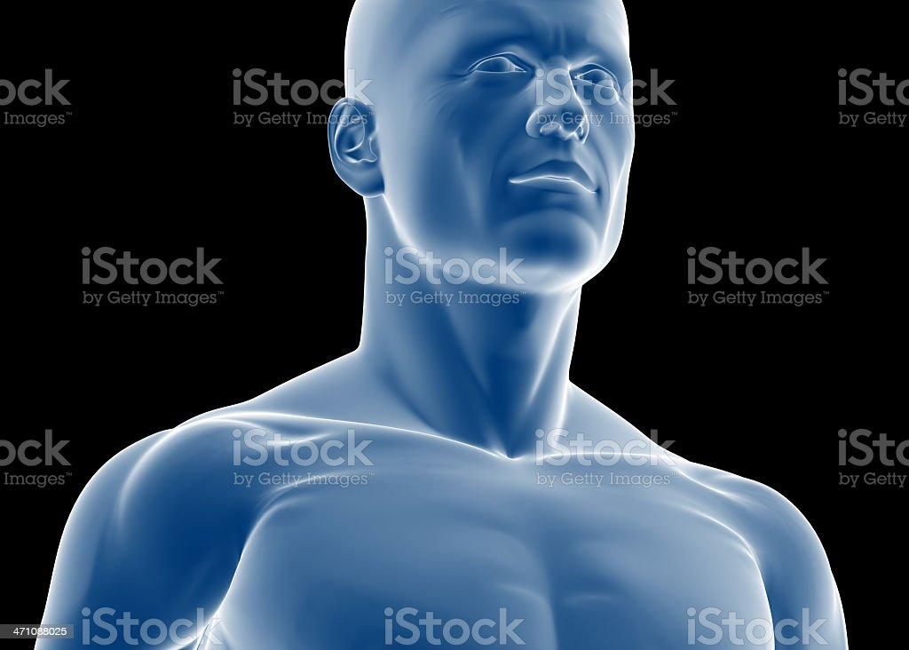 Torso of a man royalty-free stock photo