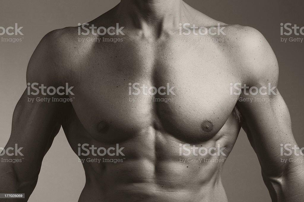 Torso of a Muscular Man royalty-free stock photo