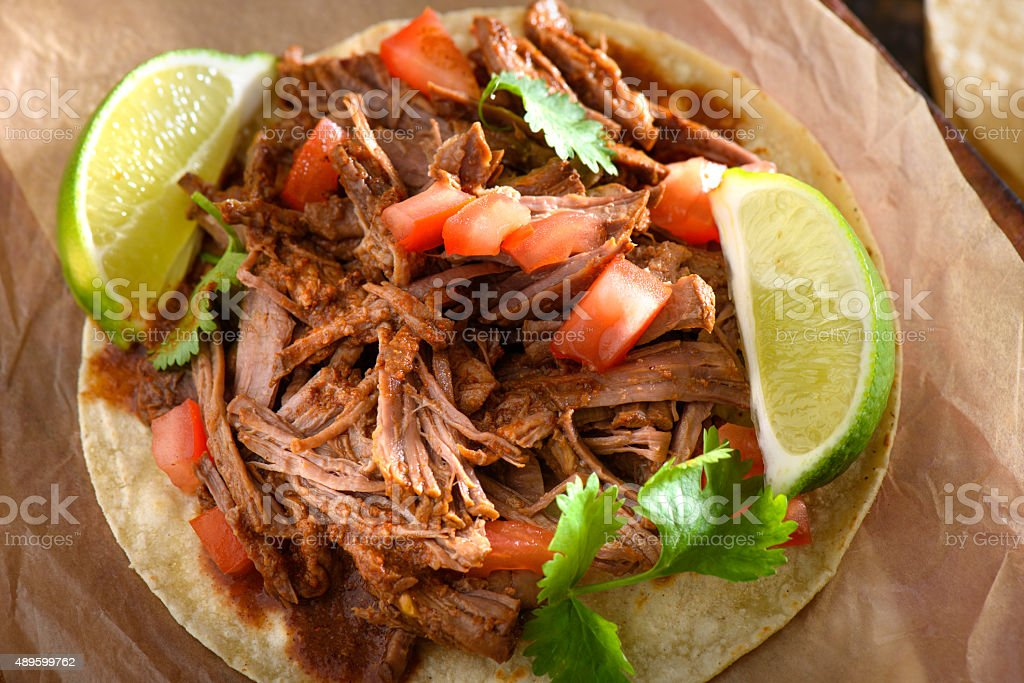 Tortilla with Pulled Pork stock photo