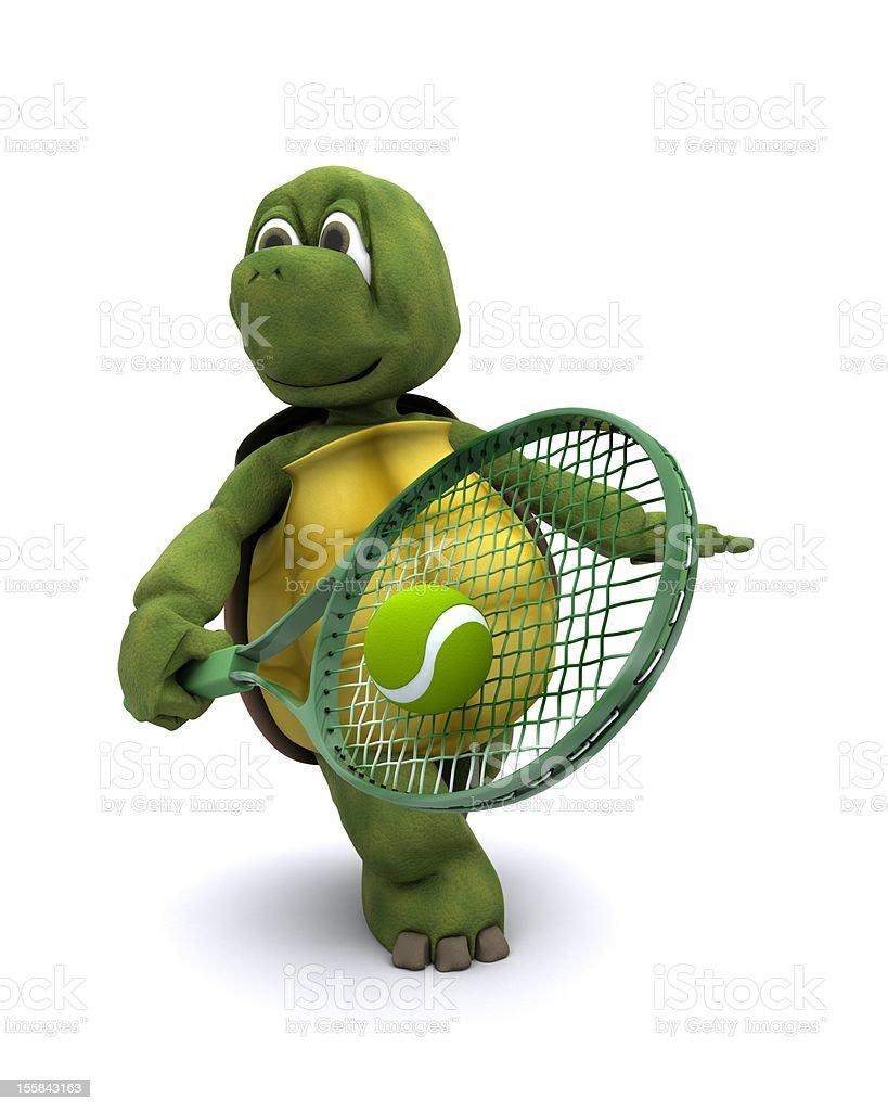 Tenis pelota stock de ilustracion ilustracion libre de stock de - Bola De Tenis Pelota Deporte Ejercicio F Sico Ilustraci N Tortuga Jugar Al Tenis Foto De Stock Libre