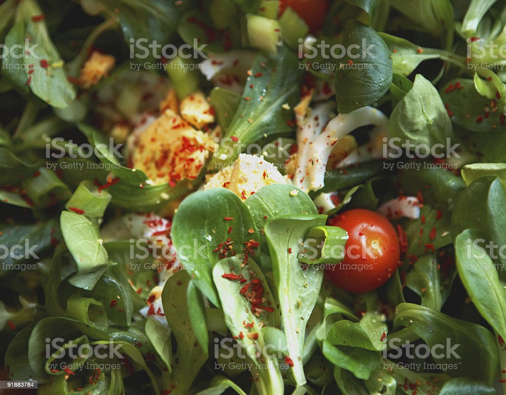 Tossed green salad royalty-free stock photo