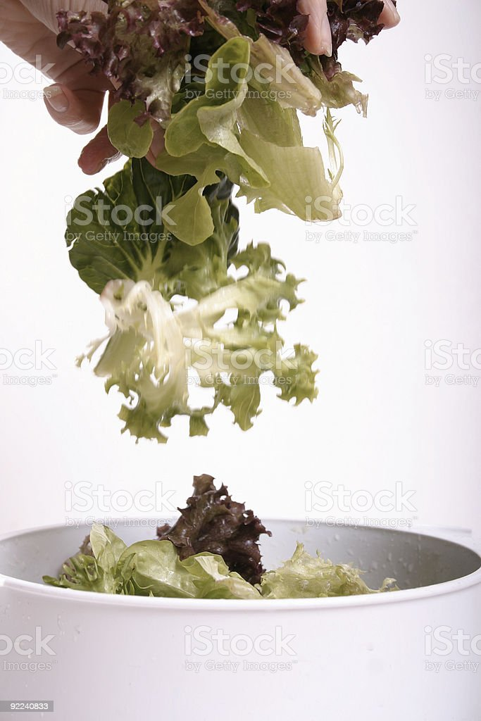 Tossed Lettuce royalty-free stock photo