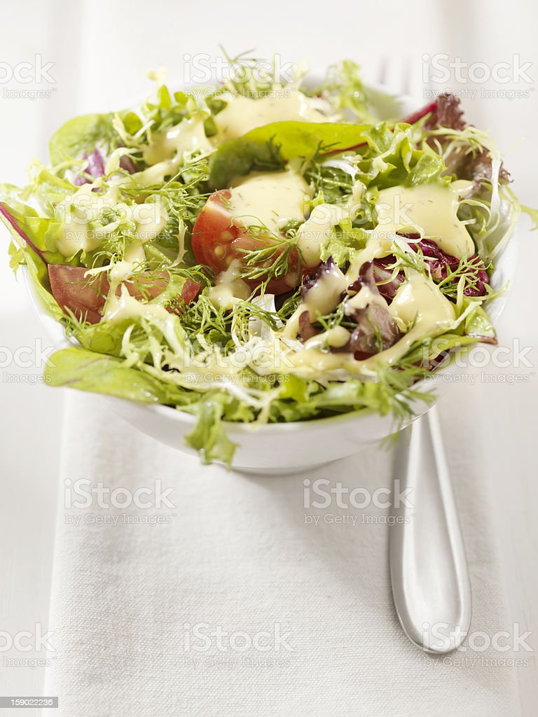 Tossed Salad with a Dijon Musturd, Dill Dressing stock photo