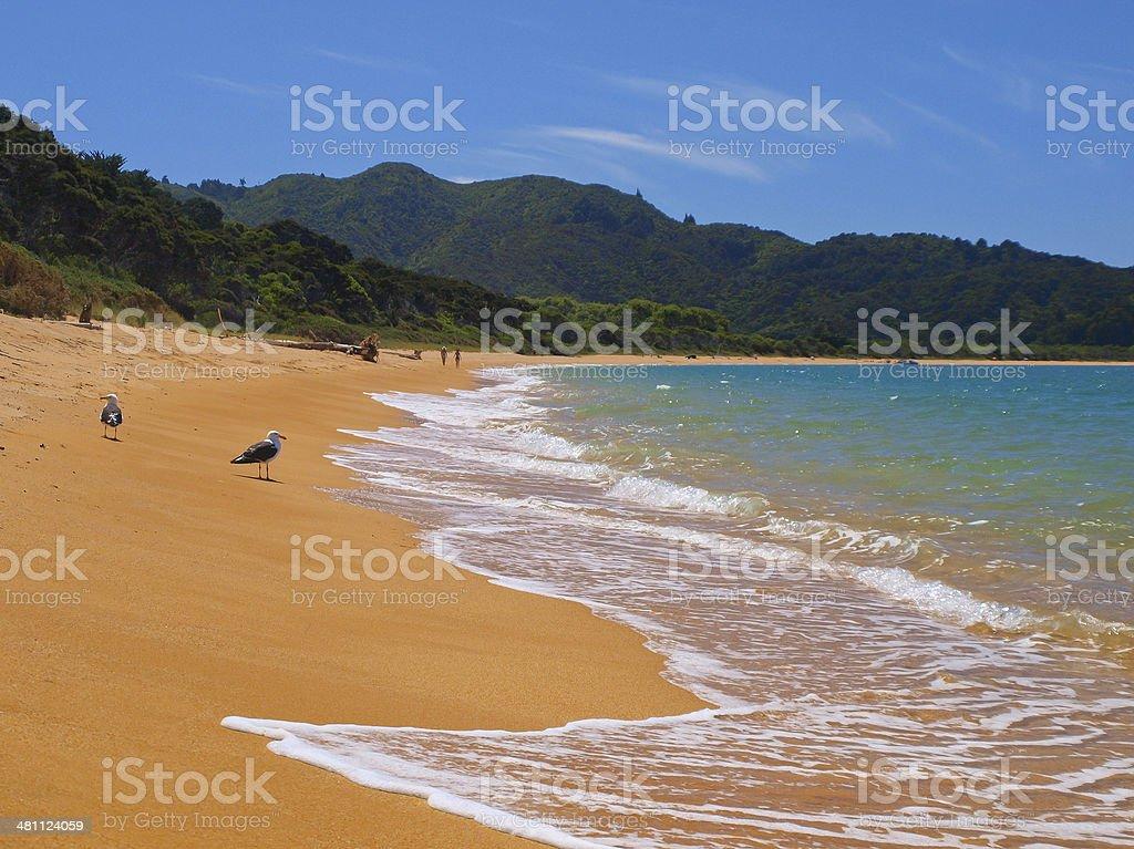 Totoranui Beach stock photo