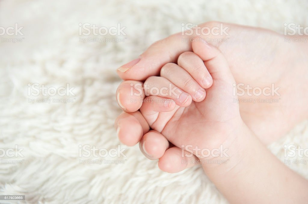 Touch of newborn. Safe in Mom's Hands stock photo