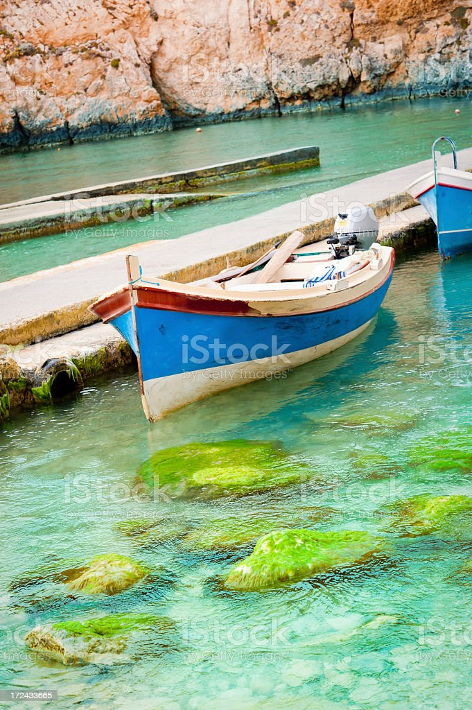 Tour Boats Ready for Action royalty-free stock photo
