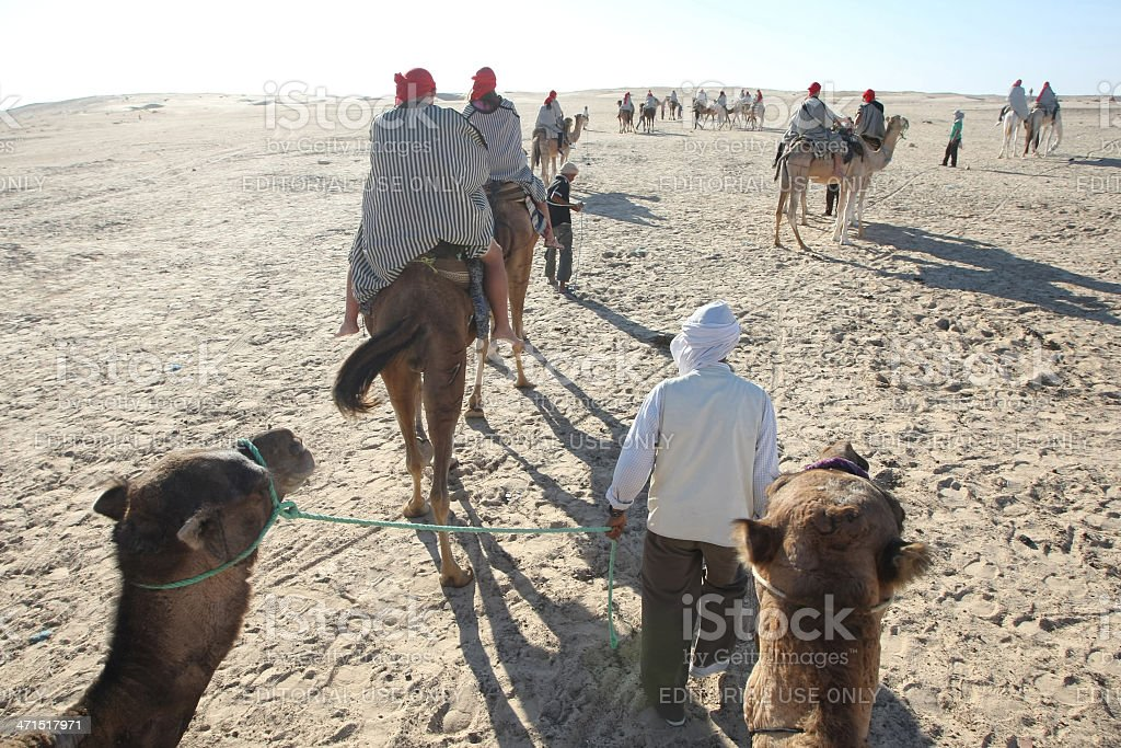 Tour on the camels royalty-free stock photo