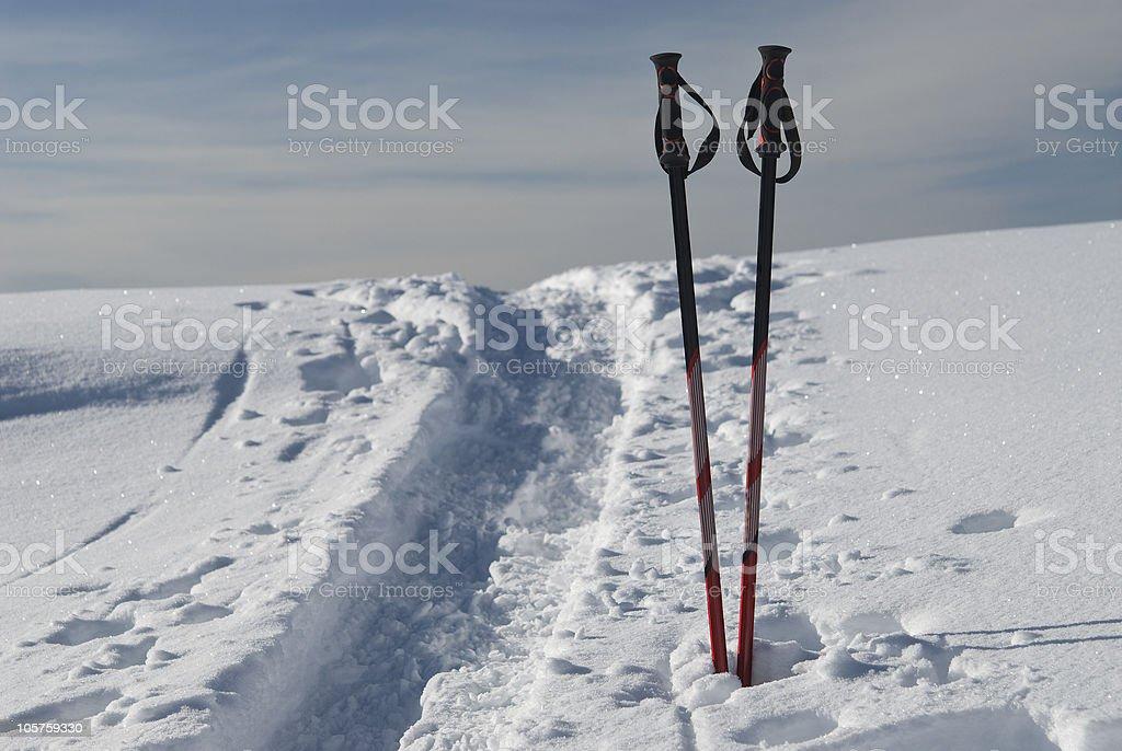 Touren ski poles / sticks royalty-free stock photo