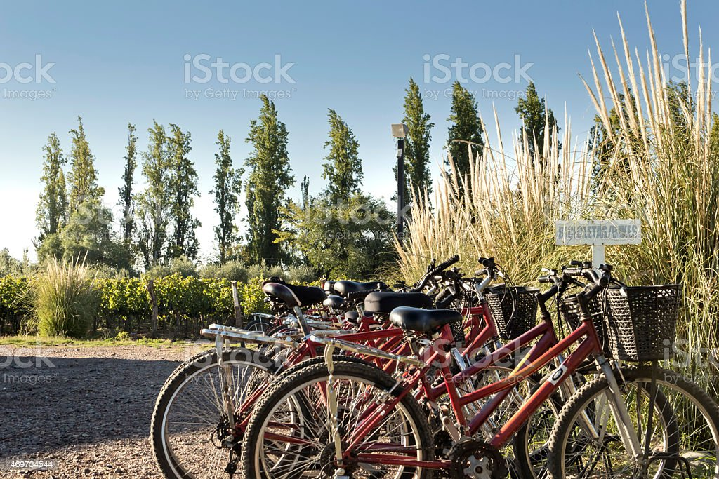 Tourism bicycles stock photo