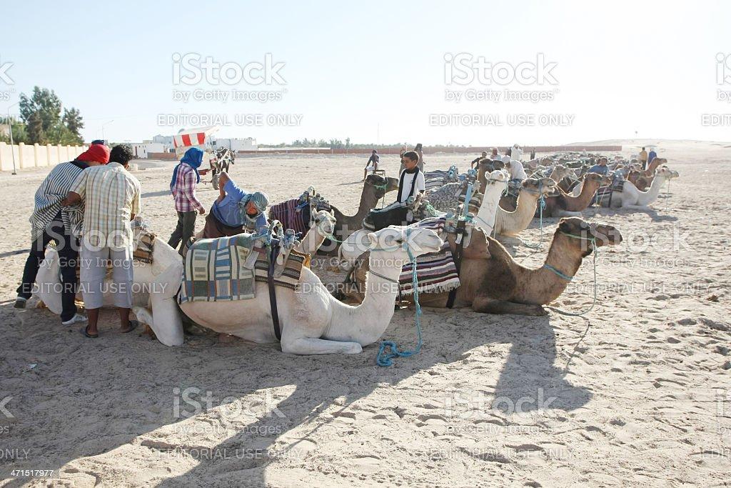 Tourism in Douz royalty-free stock photo