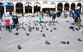 tourist and pigeons on St Mark's Square in Venice