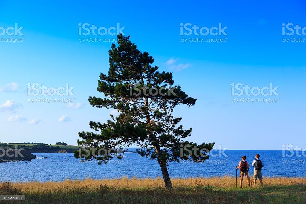 Tourist enjoying the calm sea stock photo