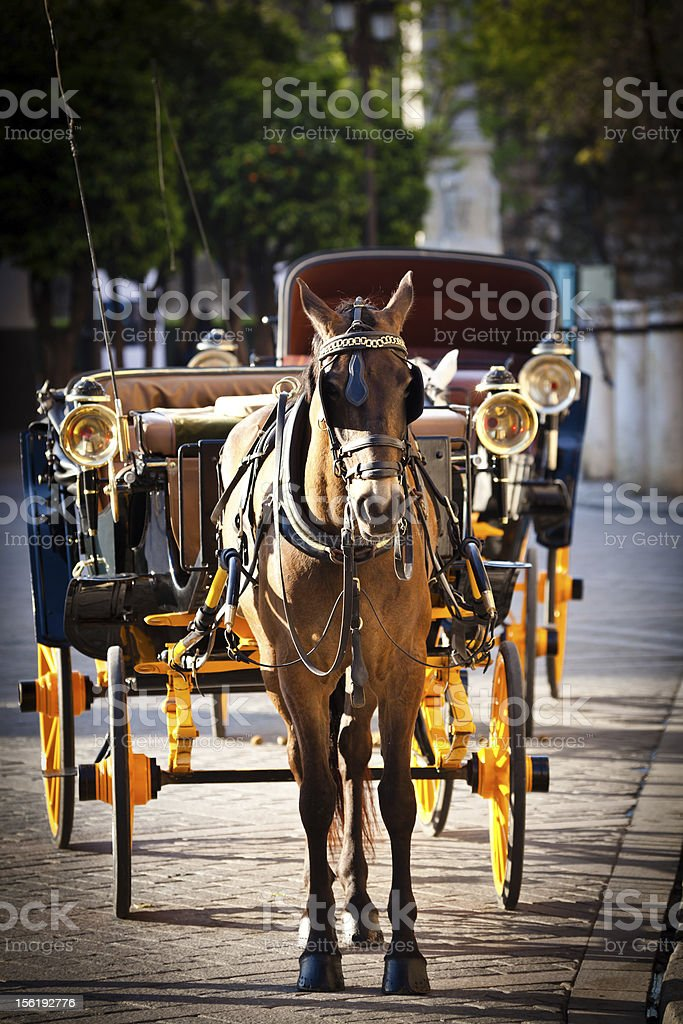 Tourist Horse and Carriage in Sevilla, Europe royalty-free stock photo