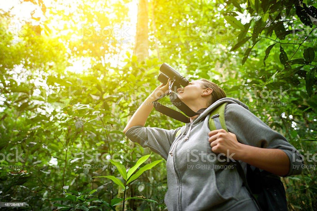 Tourist looking through binoculars considers wild birds in the j stock photo