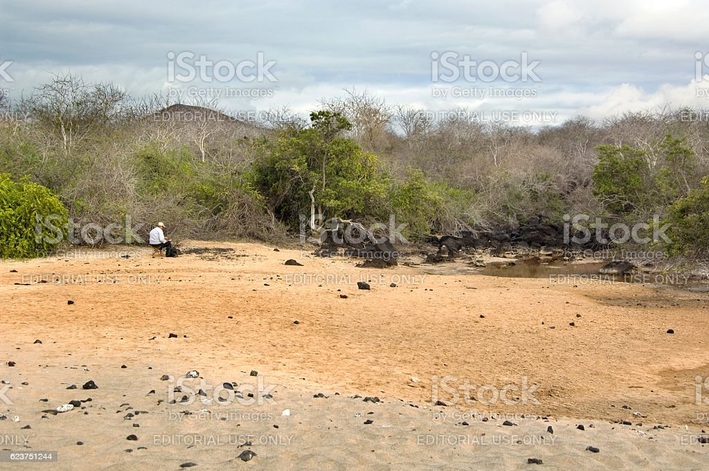 Tourist painting landscape Floreana Island, Post Office Bay, Galapagos stock photo