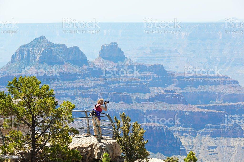 Tourist Photographing Grand Canyon North Rim stock photo