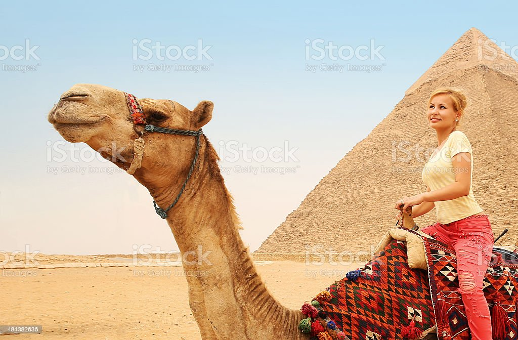 Tourist riding camel in Giza. Young blonde woman near Pyramid stock photo
