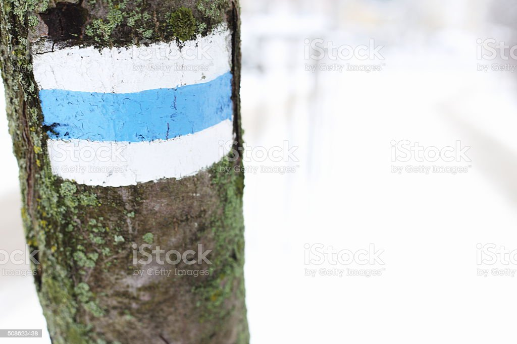 Tourist road sign on tree royalty-free stock photo