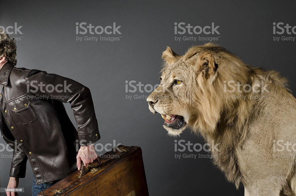 Tourist Running from a Lion stock photo