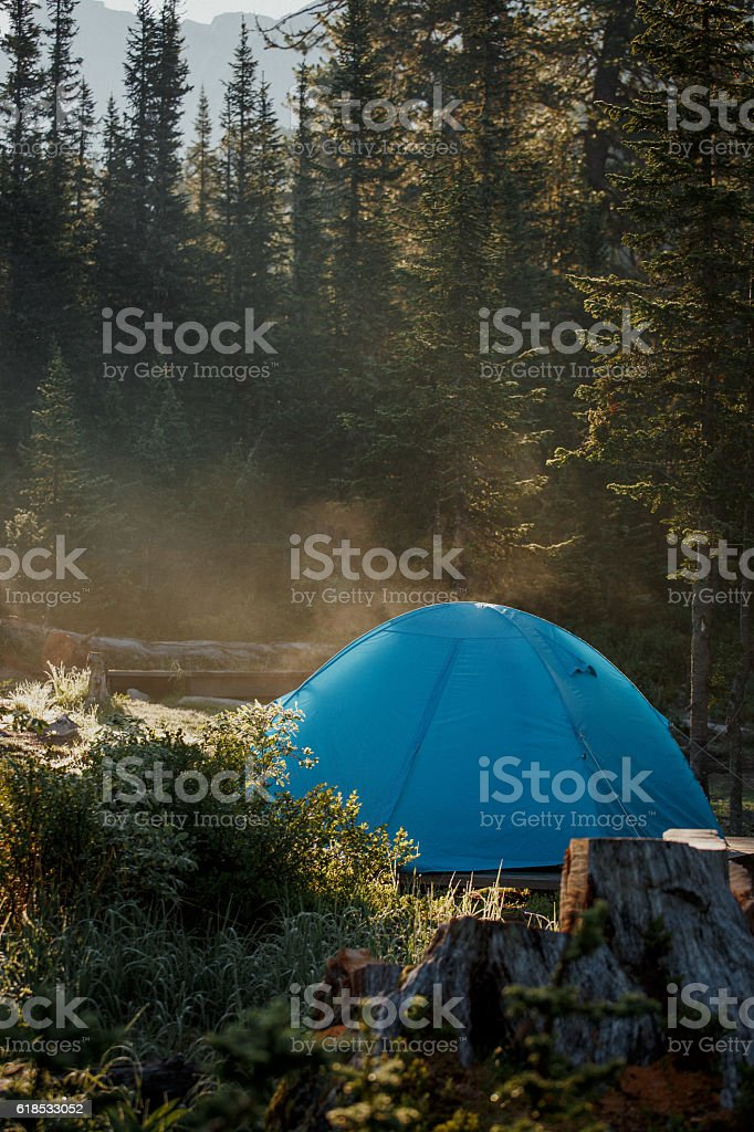 Tourist tent in wild forest. Morning in taiga royalty-free stock photo