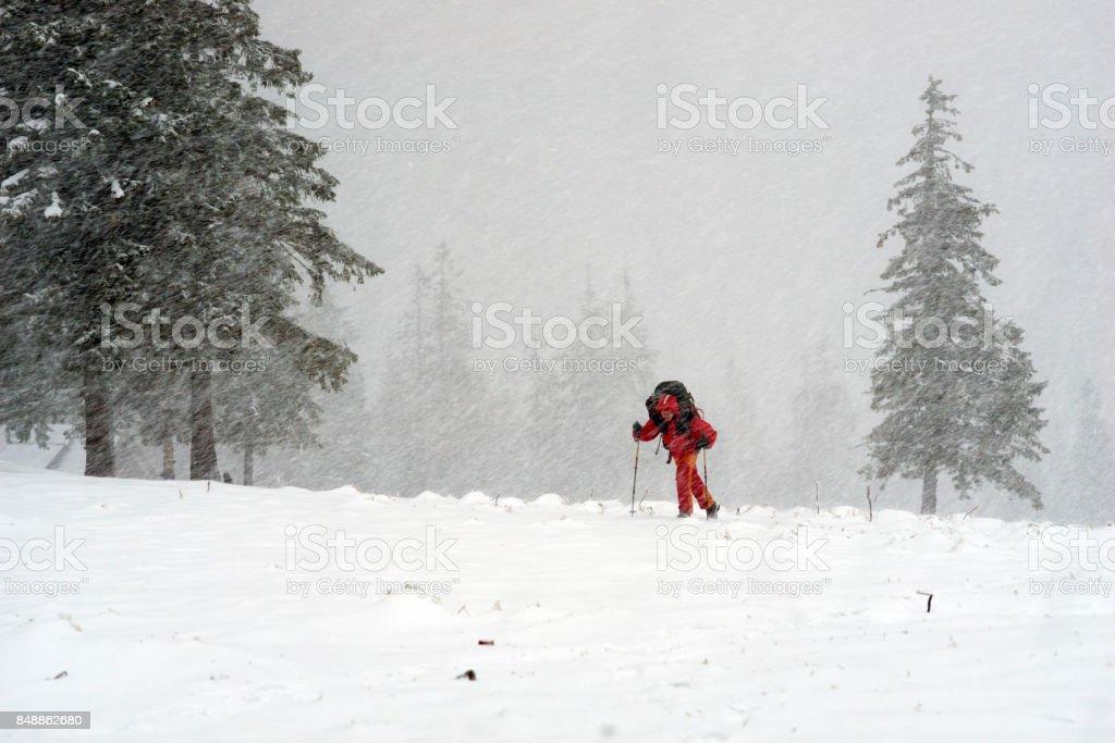 Tourist through a violent storm stock photo