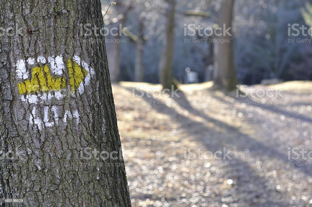 tourist trail with yellow sign on the tree stock photo