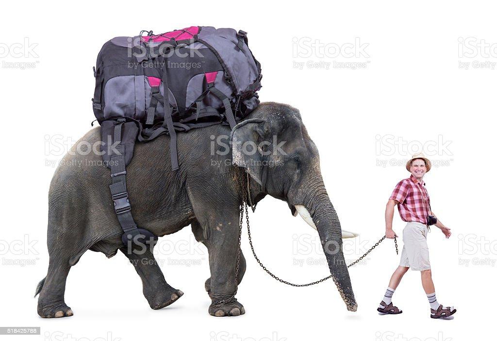 tourist walking a elephant, isolated on white background stock photo