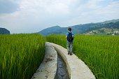 Tourist walking along the rice paddies in Yuanyang
