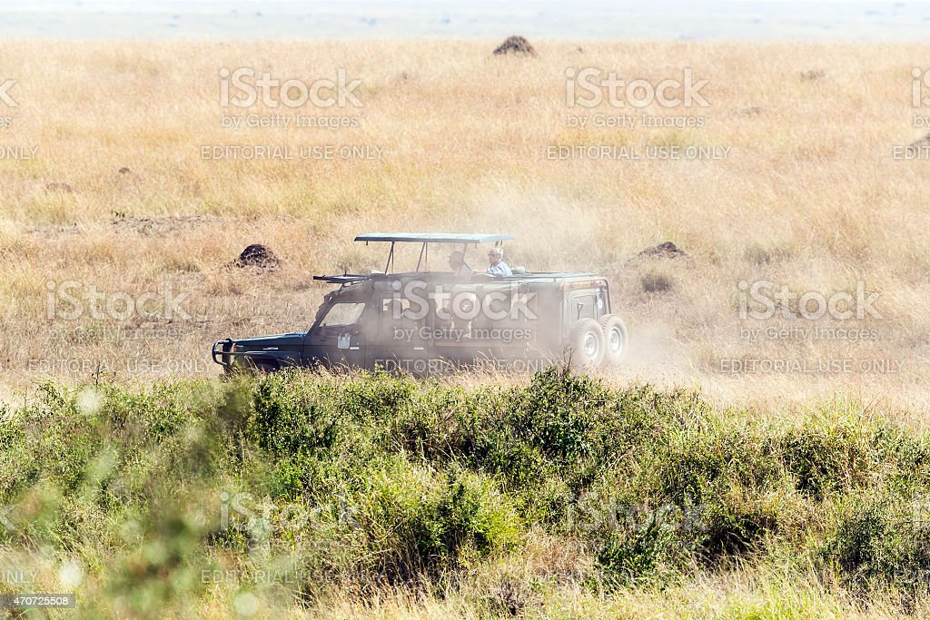 Tourists with Safari Car and They are following Great Migration in...