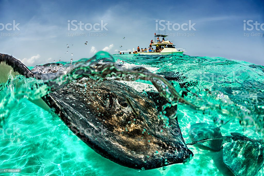 Touristic attraction royalty-free stock photo