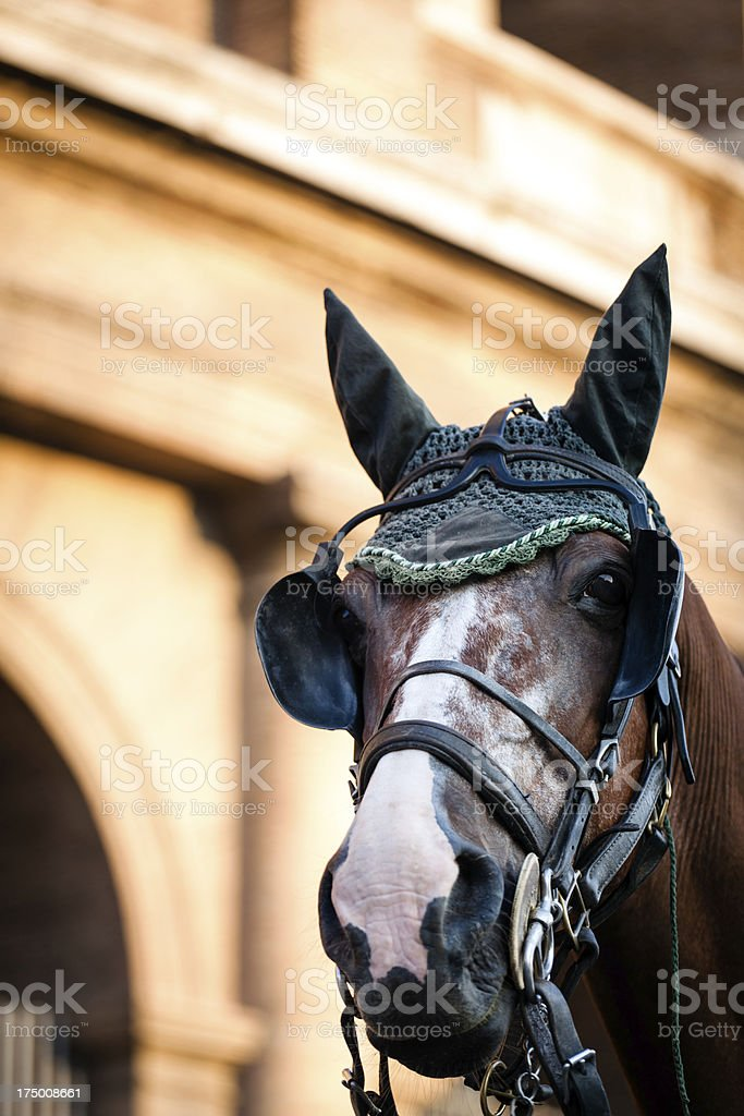 Touristic horse carriage outside Colosseum royalty-free stock photo