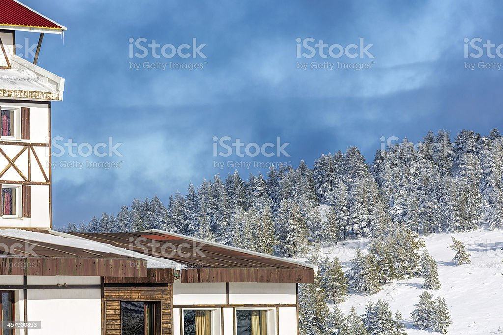 Touristic Resort in the Woods stock photo