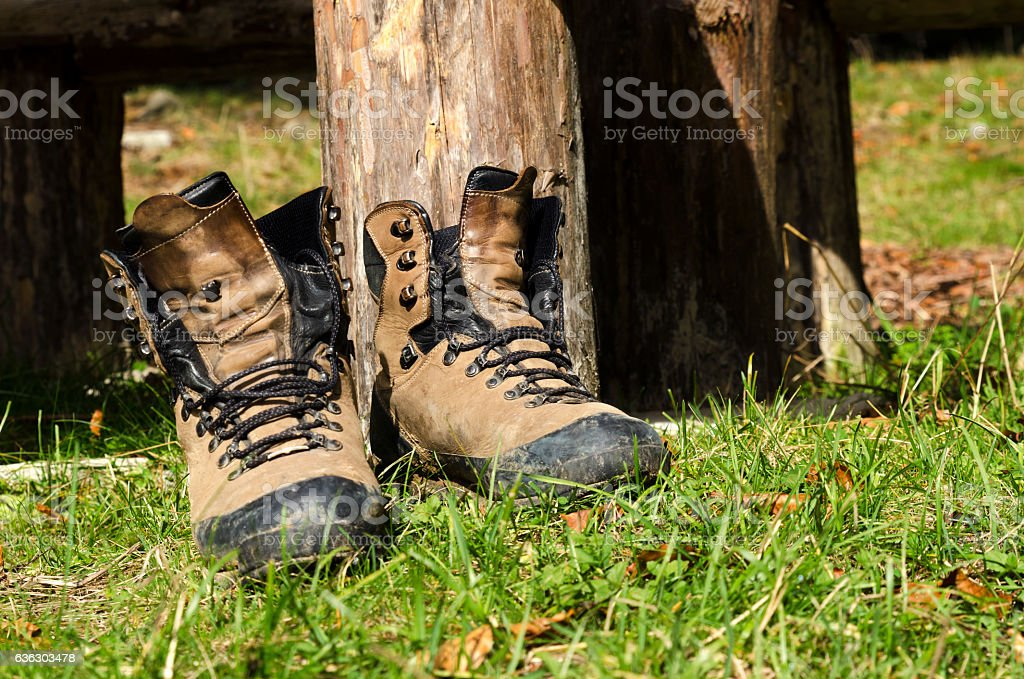 Touristic shoes in wood stock photo