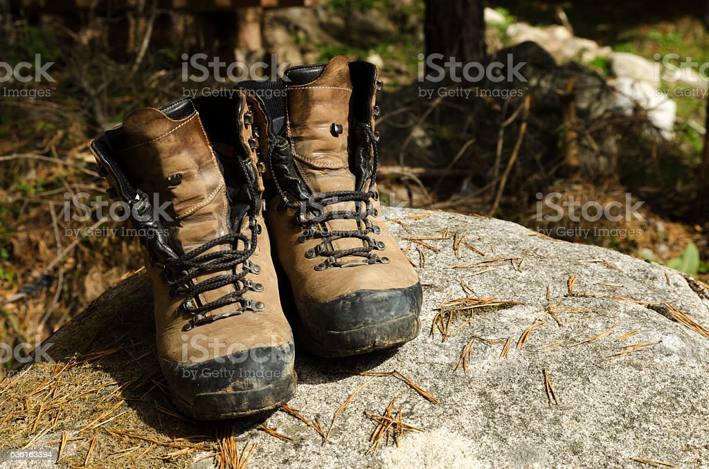 Touristic shoes on a rock and pine needles stock photo