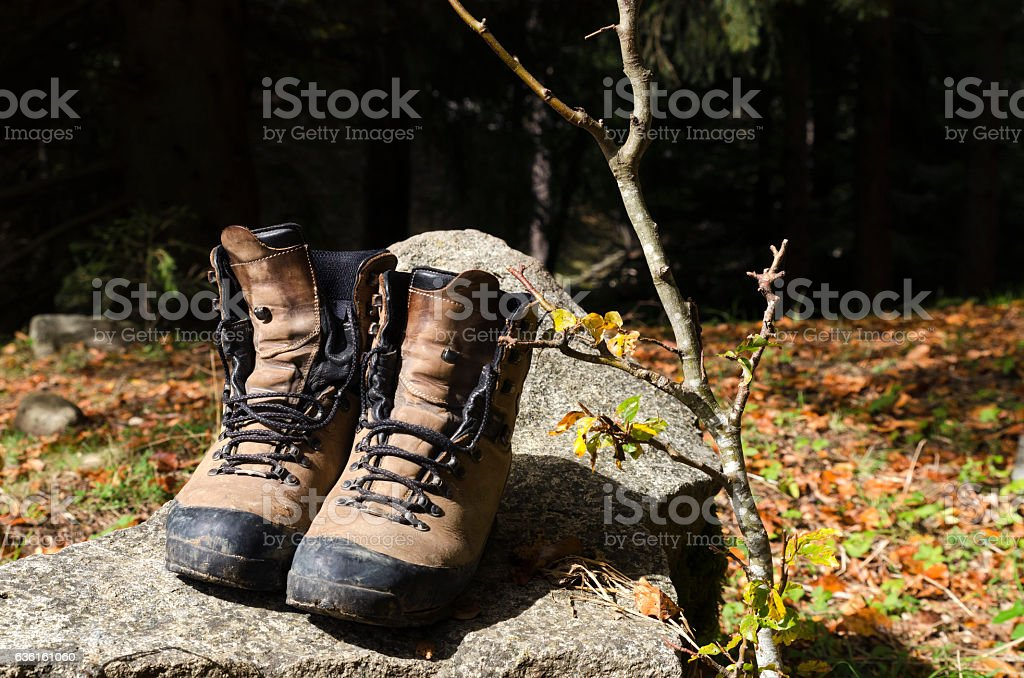 Touristic shoes on a rock in a wood stock photo