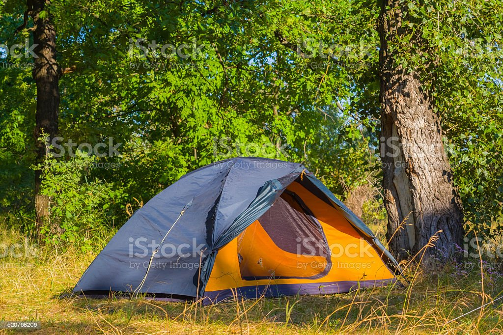 touristic tent in a forest stock photo