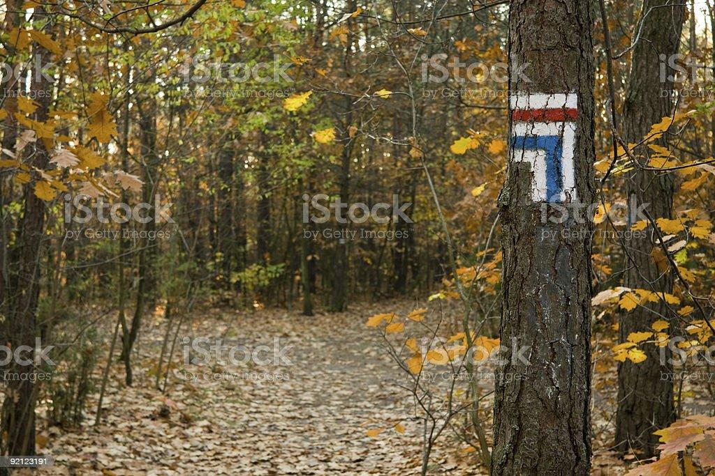 Touristic trail crossroad in autumn stock photo