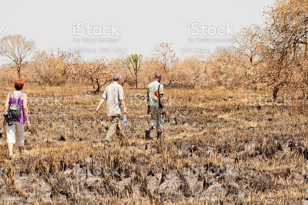 Tourists and Rhino Ranger are walking stock photo