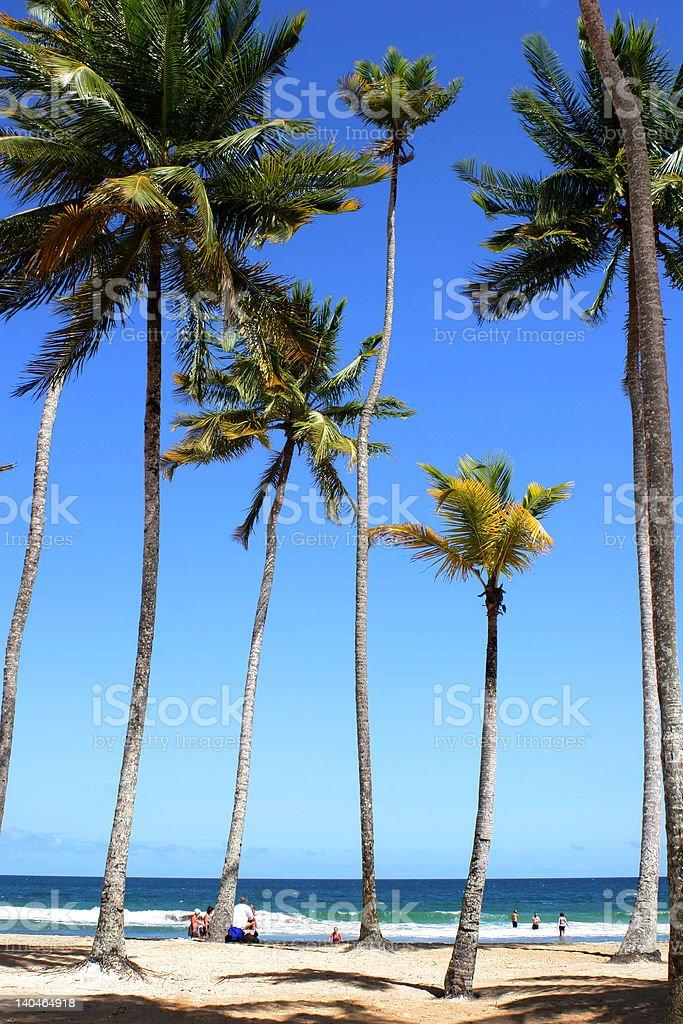Tourists enjoying the beach royalty-free stock photo