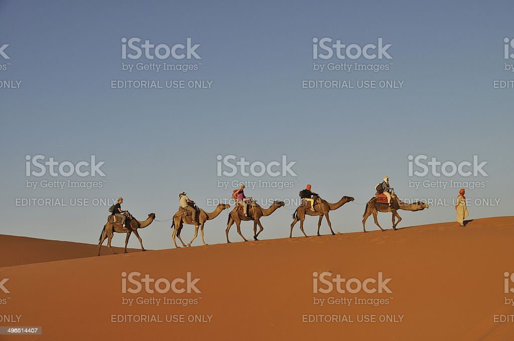 Tourists in a camel caravan stock photo
