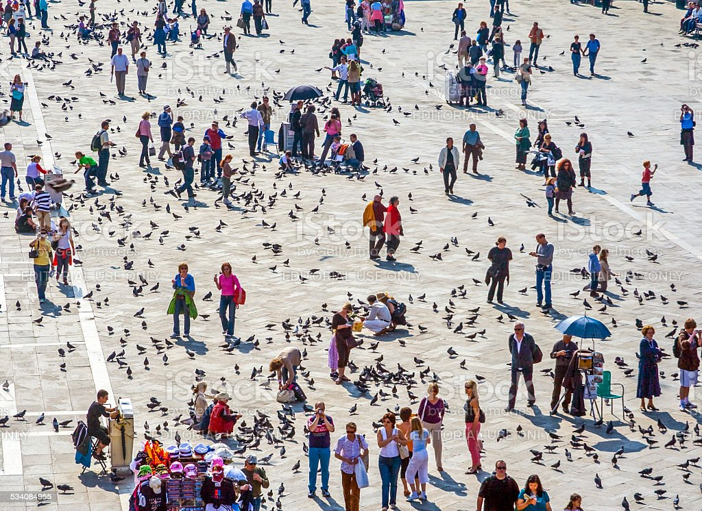 Tourists on San Marco square feed large flock of pigeons stock photo