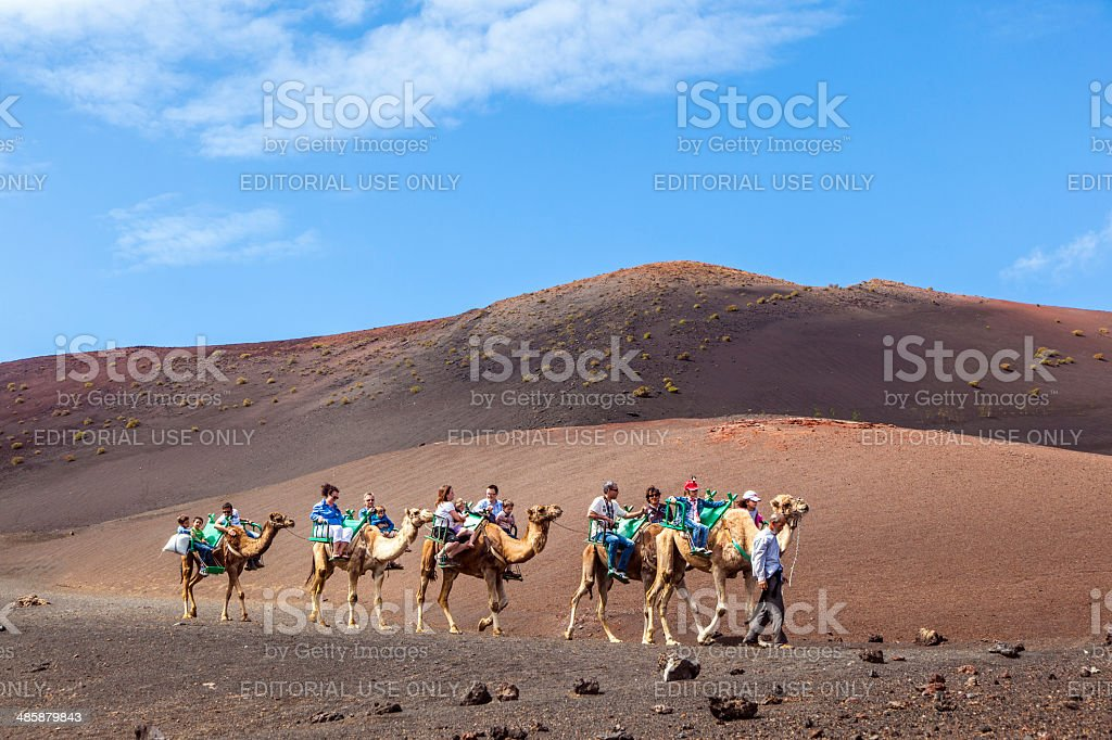 Tourists ride on camels being guided by local people stock photo