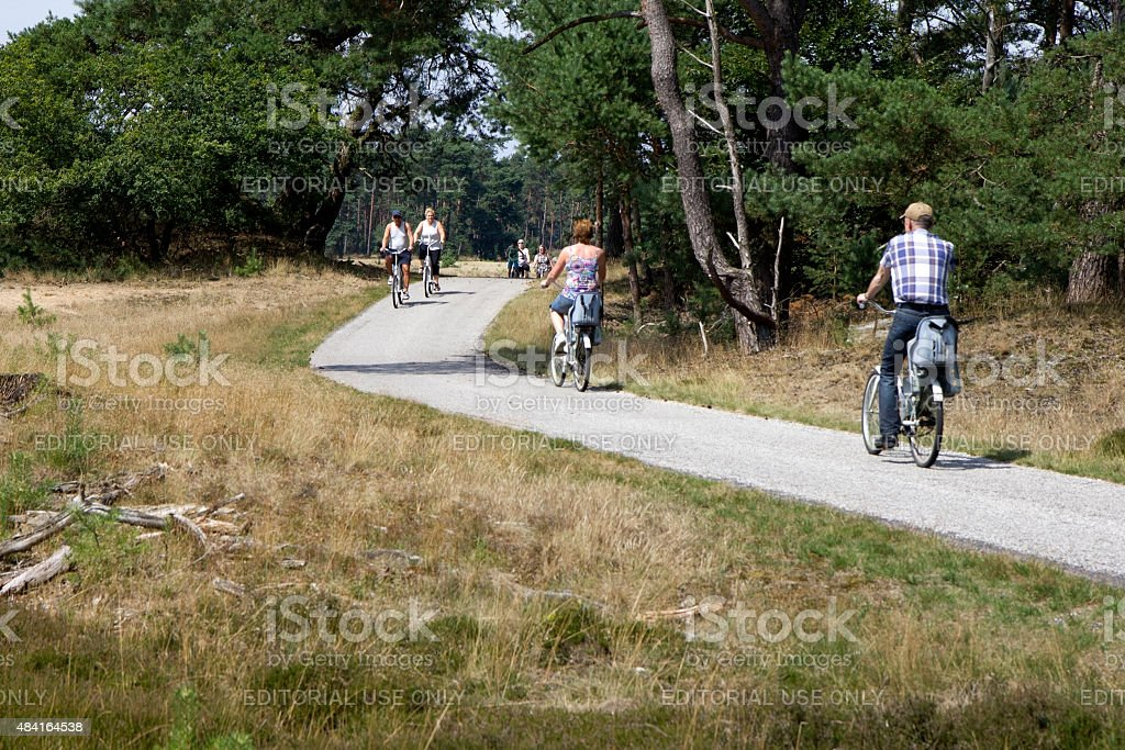 Tourists riding bicycles in National Park Hoge Veluwe, The Netherlands. stock photo