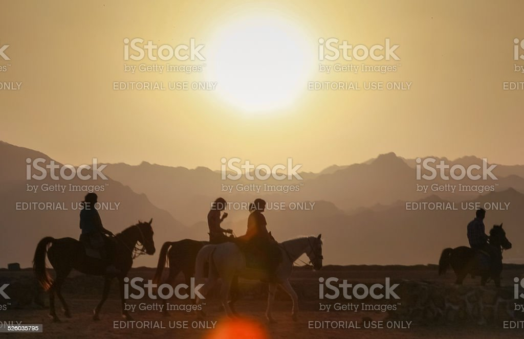 Tourists riding horses stock photo