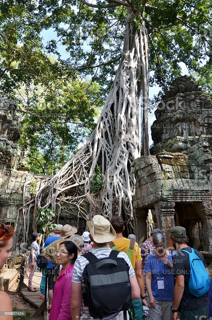Tourists visit Ta Prohm temple at Angkor stock photo