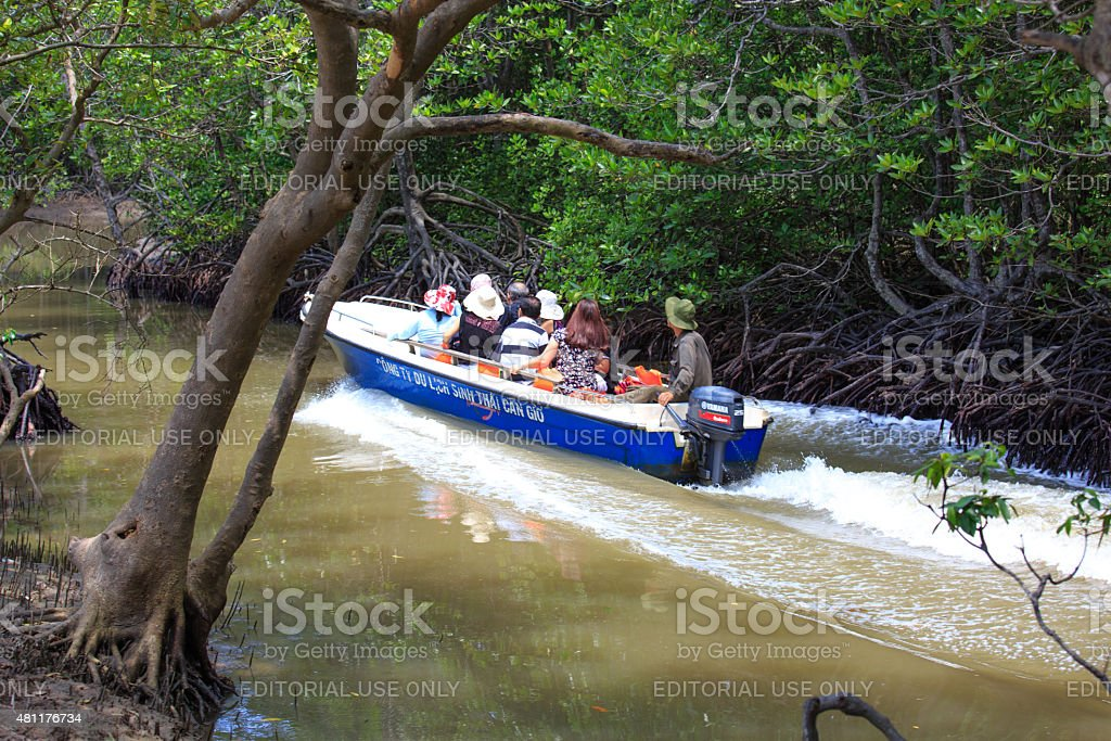 Tourists visit the Mangroves with canoes CanGio war zone, stock photo